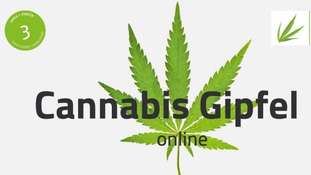 """Im Juni wird es mit dem """"Cannabis Gipfel online"""" einen digitalen Fortbildungsmonat geben. (c / Foto: Screenshot)"""