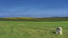 """Um """"Grenzbereiche der Rezeptpflicht"""" geht es in der aktuellen Ausgabe der DAZ. (Foto: nmnac01 / stock-adobe.com)"""