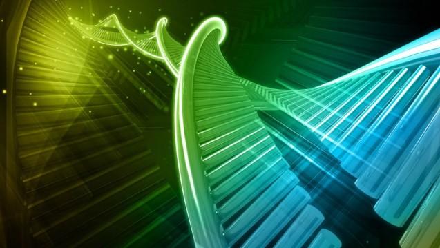 Etwa acht Prozent der menschlichen DNA bestehen den Forschern zufolge aus Überresten von Viren, die einst unsere Vorfahren infizierten und ihr Erbgut in deren Genom einschleusten. (Foto: abhijith3747 / Fotolia)