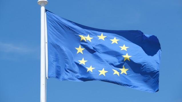 In wenigen Tagen übernimmt Deutschland die EU-Ratspräsidentschaft. Heute hat das Bundeskabinett das Programm für de halbjährige Amtszeit beschlossen. (c / Foto: imago images / Stephan Wallocha)