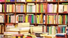 Die Preisbindung soll für Vielfalt im Buchmarkt sorgen, weil sie den unabhängigen Buchhandel und die Verlage als Garanten dafür schützen soll. Die Monopolkommission sieht das anders. (Foto: PANORAMO / stock.adobe.com)