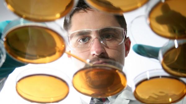 Antibiotika-Resistenzen nehmen weltweit zu