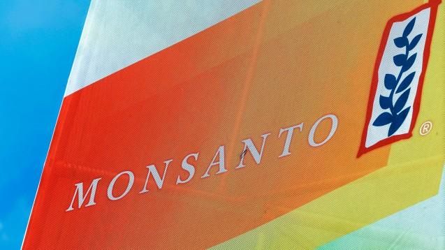 Ein Schritt weiter: Bayer will den US-amerikanischen Gentechnik- und Saatgutkonzern Monsanto kaufen. (Foto: dpa)