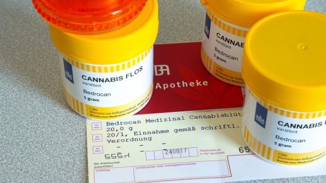 Seit dem 1. Juli ist bei der Abrechnung von Cannabis-Rezepturarzneimitteln eine neue Formalität zu beachten.(x / Foto: IMAGO / JuergenxBlume)