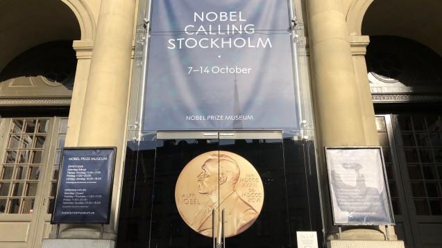 Der Chemie-Nobelpreis 2019 ehrt Goodenough, Stanley Whittingham und Akira Yoshino für ihre Beiträge zur Entwicklung von Lithium-Ionen-Batterien. (Foto: picture alliance/Steffen Trumpf/dpa)