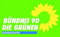 D032013_ak_wahl-gruene.jpg