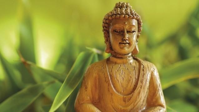 Indien will Ayurveda und andere traditionelle Therapierichtungen weiterentwickeln. (Foto: maru1937 / Fotolia)
