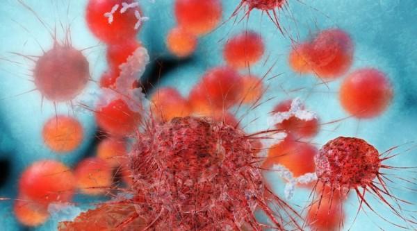 FDA prüft Leukämie-Wirkstoff von Roche schnell