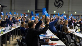 Europawahl: AfD fordert Rx-Versandverbot und Schutz vor EuGH-Urteilen
