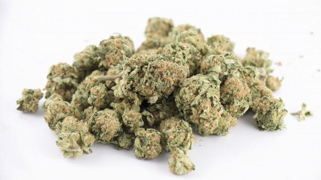 Bald aus der Apotheke? Die neue gegründete Jamaika-Koalition in Kiel denkt darüber nach, den Cannabis-Konsum teilweise zu legalisieren. (Foto: rgsbspace / fotolia)