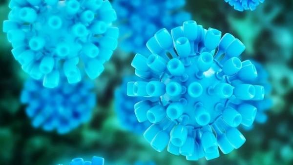 FDA-Warnung für Hepatitis C-Mittel Viekirax und Exviera