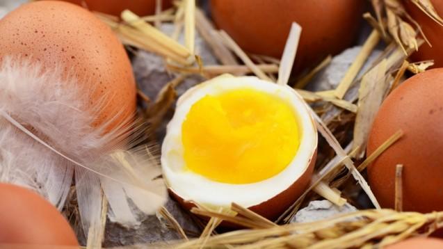 Es dürfen auch mal drei Eier sein. Zu Ostern. (Foto: photocrew / Fotolia)