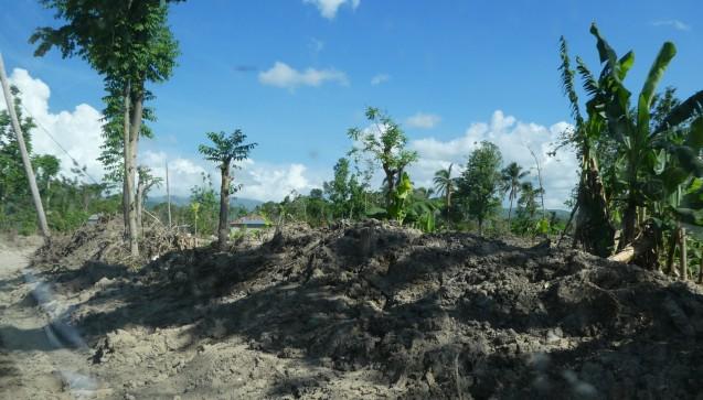 Der Hurrikan hat weite Landstriche verwüstet. (Foto:AoG-Archiv / Bettina Rüdy)