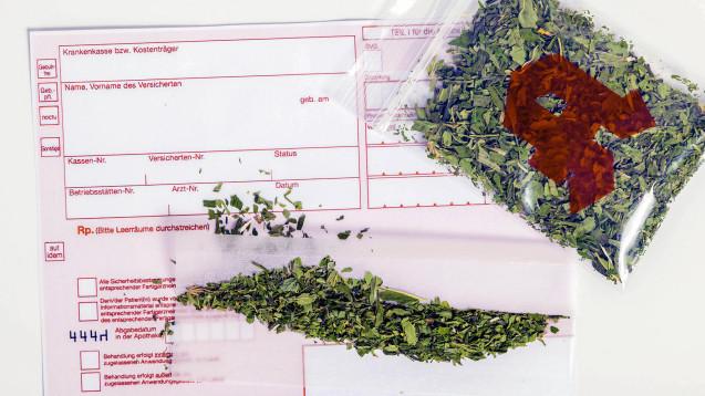 Die Mehrheit der Apotheker ist von Cannabis als Therapieoption überzeugt - moniert jedoch die bürokratischen Hürden rund um die Abgabe. (Foto: Imago)