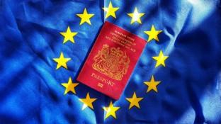 BMG befürchtet keine Versorgungsprobleme nach Brexit