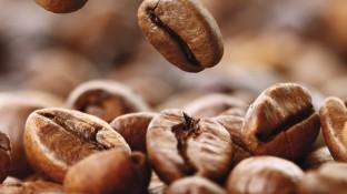 Pharmako-logisch! UPDATE: Neuropathische Schmerzen, Opioide und Coffein