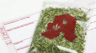 Bayern ist Spitzenreiter bei Cannabis-Anträgen