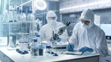 Die deutsche Pharmaindustrie hat soviel wie noch nie in die Forschung investiert. (Foto:Gorodenkoff / Fotolia)