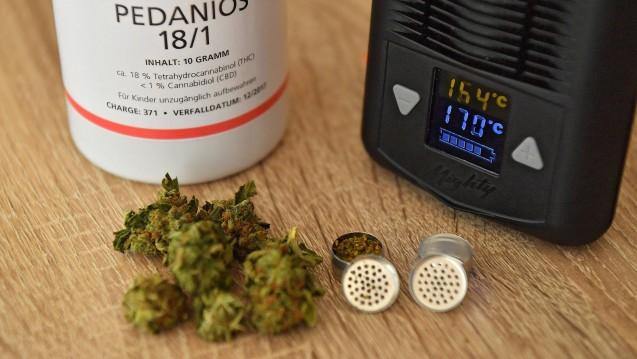 retax quickie cannabis vaporizer auf rezept was. Black Bedroom Furniture Sets. Home Design Ideas