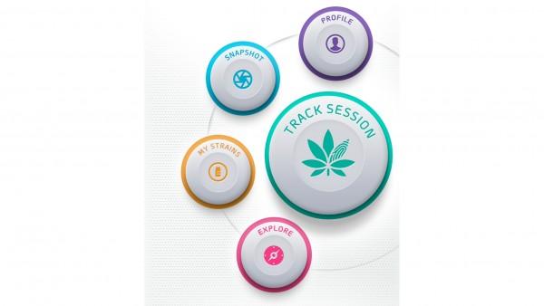 Cannabistherapie: Evidenz per App?