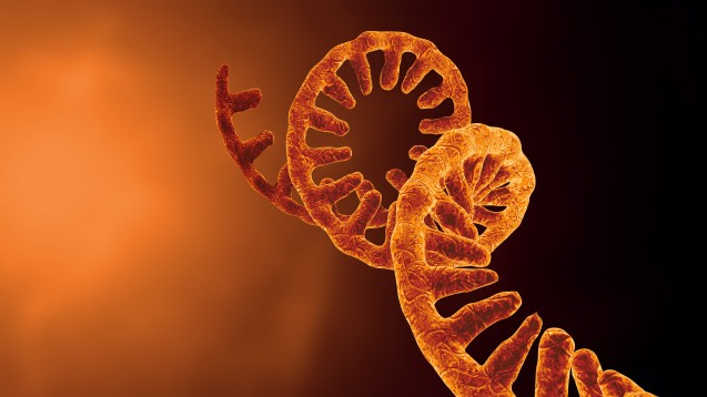 Moderna und Sanofi erforschen ihre mRNA-Grippeimpfstoffkandidaten nun in Phase 1 der klinischen Prüfung. (Foto:CROCOTHERY / AdobeStock)