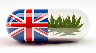 Cannabis zu medizinischen Zwecken jetzt auch in UK