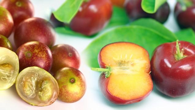 Zwei Gramm Vitamin C sollen in hundert Gramm Camu-Camu-Fruchtfleisch (links) enthalten sein. Das ist das Vierzigfache an Vitamin C, das Orangen enthalten. Acerola (rechts) punktet mit immerhin 1.000 bis 2.500 Milligramm Vitamin C pro hundert Gramm Presssaft. (Fotos: Marco Tulio, Ildi / stock.adobe.com)