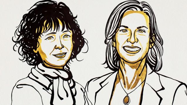 Für die Entdeckung der genetischen Schere CRISOR/Cas9 erhielten die Wissenschaftlerinnen Emmanuelle Charpentier (l.) und Jennifer A. Doudna den Nobelpreis in Chemie. (Illustration: Niklas Elmehed for Nobel Media)