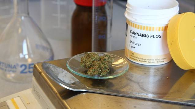 Bundestagsabgeordnete der Linksfraktion wollten von der Bundesregierung in einer Kleinen Anfrage wissen, wie es aktuell um die Versorgungssituation und den Bedarf an medizinischem Cannabis bestellt ist.(c / Foto: imago images / epd)