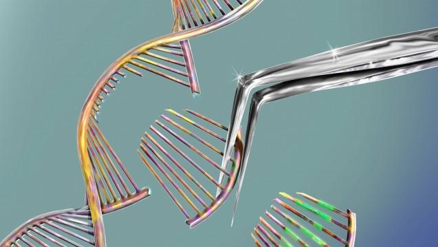 Der Neurowissenschaftler und Crispr-Pionier Feng Zhang warnt im Handelsblatt davor, die revolutionäre Technik der Genschere zur DNA-Veränderung von Embryonen zu missbrauchen. (m / Foto:imago images / Science Photo Library)