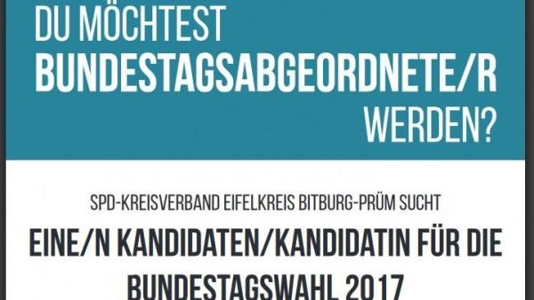 SPD sucht Bundestagsabgeordneten via Facebook