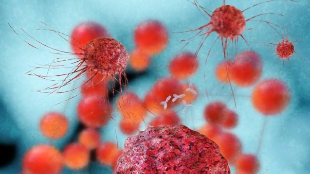 Forscher haben einen neuen Therapieansatz zur Behandlung von Leukämie und Prostatkrebs entdeckt. (Foto: fotoliaxrender/Fotolia)