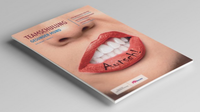 Die Teamschulung mit Informationen rund um Beschwerden im Mundraum finden alle Abonnenten der DAZ als Beilage der Ausgabe 12/2018.