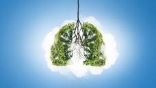 Bedenklich: homöopathische Asthma-Mittel. (Foto:Sergey Nivens/Fotolia.com)