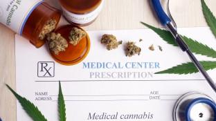 Cannabis soll verschreibungs- und erstattungsfähig werden