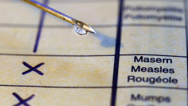Die Große Koalition bastelt an einer Masern-Impfpflicht. (Foto: Imago)