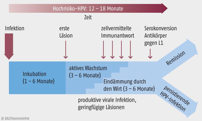 Asztal férgek - Account Options - Hpv impfung niederosterreich