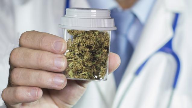 Eine aktuelle Umfrage zeigt, dass jeder zweite Arzt eine Cannabis-Freigabe befürwortet. (Bld: Michael / stock.adobe.com)