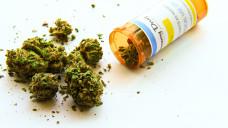 Cannabis zu medizinischen Zwecken: Deutschland als Vorbild für andere Länder? (Foto: Adam / stock.adobe.com)