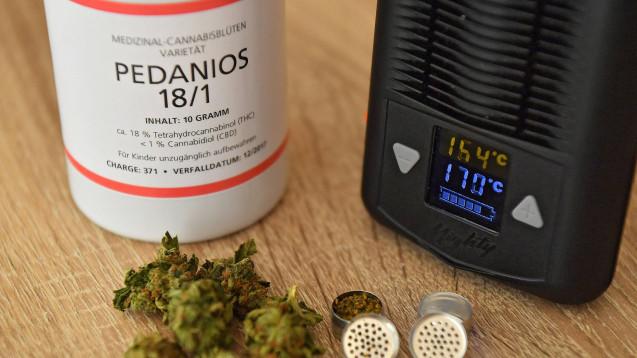 Cannabis-Lieferengpässe? Das BMG sieht kein Problem. (Foto: Imago)
