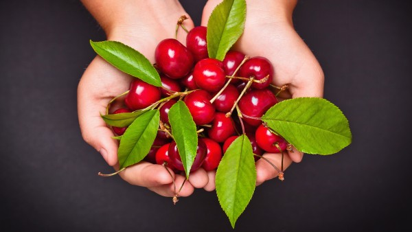 Bei Fructose-Unverträglichkeit nicht aufs Obst verzichten