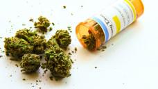 Cannabis in Arzneiqualität – für Apotheken eine Herausforderung im Alltag. (Foto: Adam / stock.adobe.com)