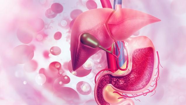 In seltenen Fällen kann es unter Tocilizumab zu schweren Leberschädigungen kommen, die in ein transplantationsbedürftiges akutes Leberversagen münden. Davor warnt ein Rote-Hand-Brief zu Roactemra. ( r / Foto: Crystal light / stock.adobe.com)