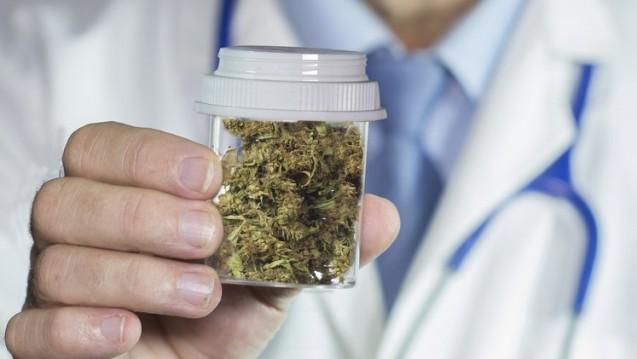 Wie funktioniert das Projekt Marihuana aus Apotheken? Fragen und Antworten. (Foto: fotolia / William Casey)