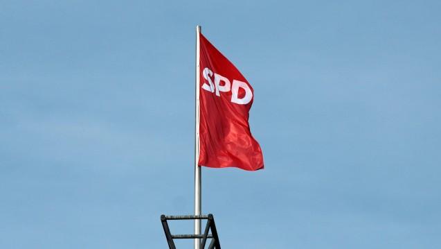 Flagge zeigen für Apotheker: Die SPD-Fraktion will sich für höhere Rezepturgebühren und BtM-Honorare einsetzen, auch in der Union gibt es diese Forderung. (Foto: Sket / DAZ)