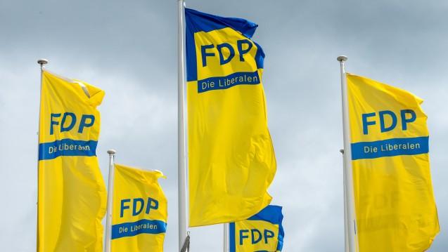 Auch die FDP hat Fragen an die Bundesregierung zum Rx-Versandverbot. (Foto:dpa)