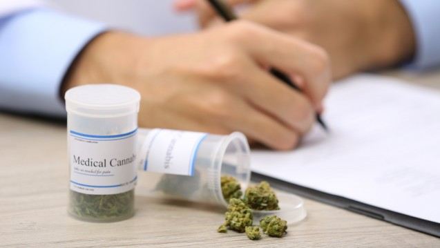 Wie sollte der Antrag auf Cannabis aussehen? (Foto:Africa Studio / stock.adobe.com)