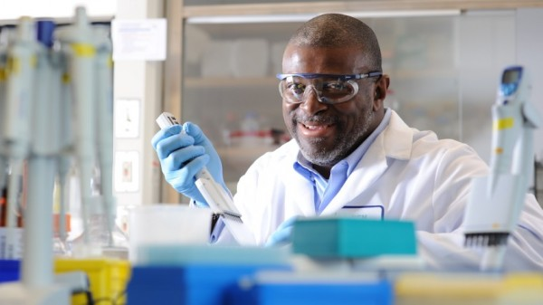 FDA nimmt Merck-Antrag für Avelumab an