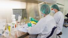 Die Herstellung applikationsfähiger Parenteralia durch Apotheken soll keine explizit pharmazeutische Tätigkeit sein – meint das Bundessozialgericht. (Foto: VZA)