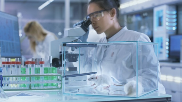 Die Blockierung des Insulinsignals durch Inceptor könnte eine Rolle bei der Insulinresistenz spielen.(Foto: Gorodenkoff / stock.adobe.com)